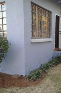 wall paint after